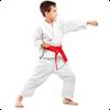 karate-img-2